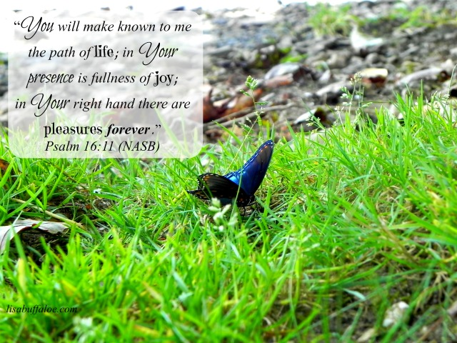 You will make known to me the path of life (Psalm 1611)
