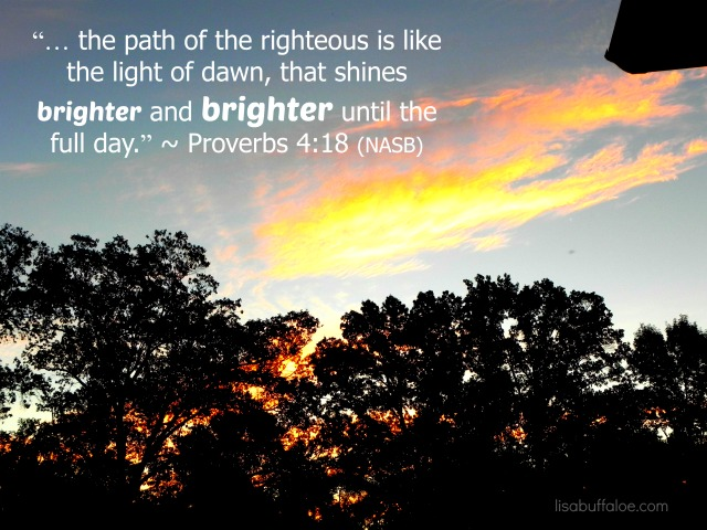 the-light-shines-brighter-and-brighter-proverbs-418
