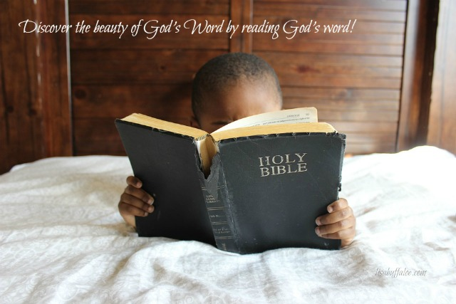 discover-the-beauty-of-gods-word-by-reading-gods-word